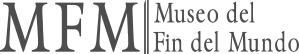 mfm slider 2018 logo